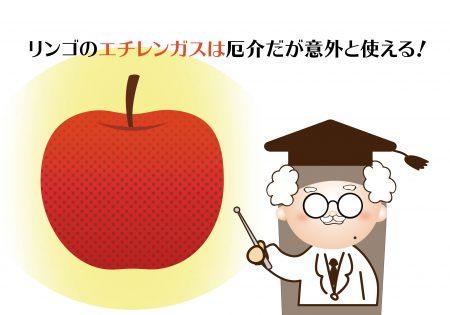 リンゴと他の青果を一緒に置いておいちゃいけないのって常識だよね?リンゴのエチレンガスの効果と活用術